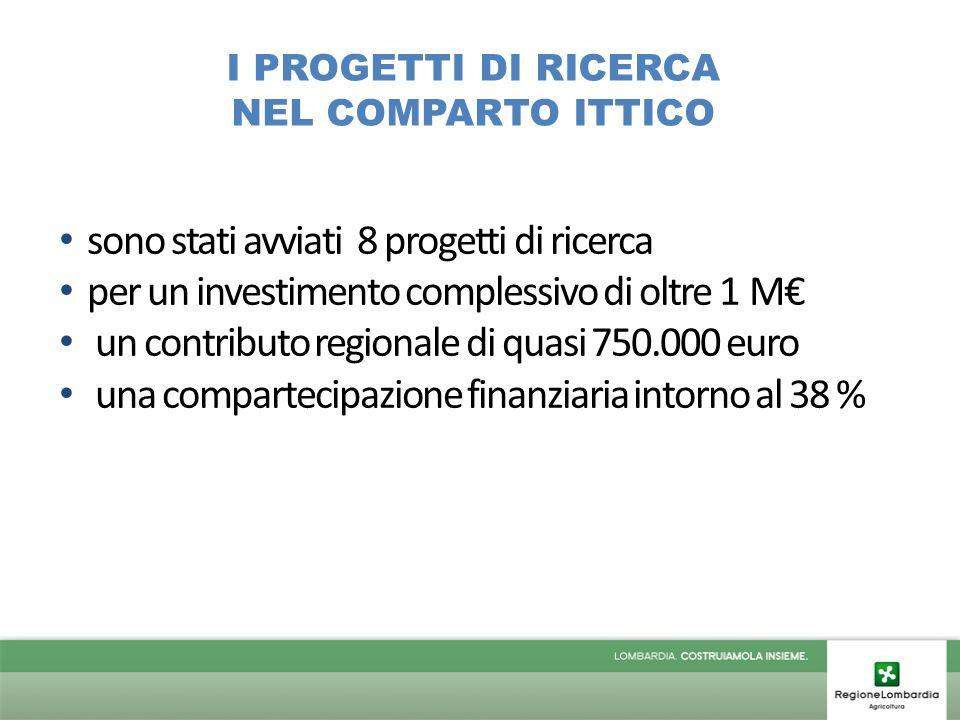 I PROGETTI DI RICERCA NEL COMPARTO ITTICO sono stati avviati 8 progetti di ricerca per un investimento complessivo di oltre 1 M€ un contributo regionale di quasi 750.000 euro una compartecipazione finanziaria intorno al 38 %