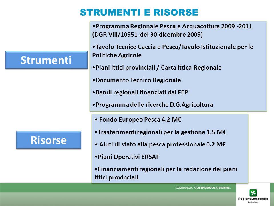 Risorse Fondo Europeo Pesca 4.2 M€ Trasferimenti regionali per la gestione 1.5 M€ Aiuti di stato alla pesca professionale 0.2 M€ Piani Operativi ERSAF