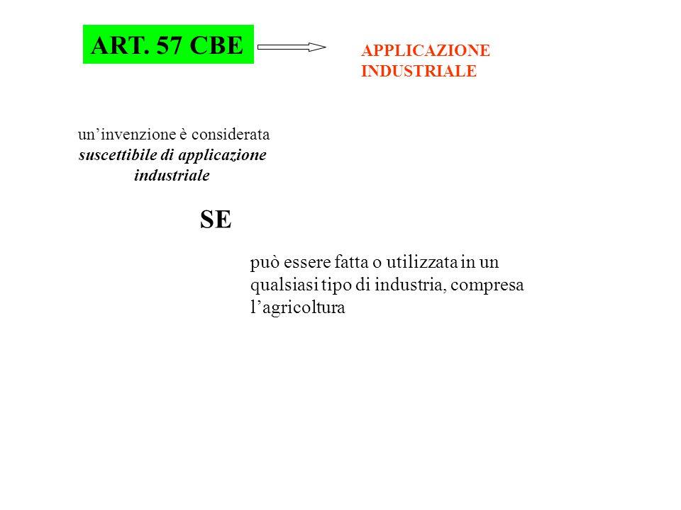 Art.51. Sufficiente descrizione 1.