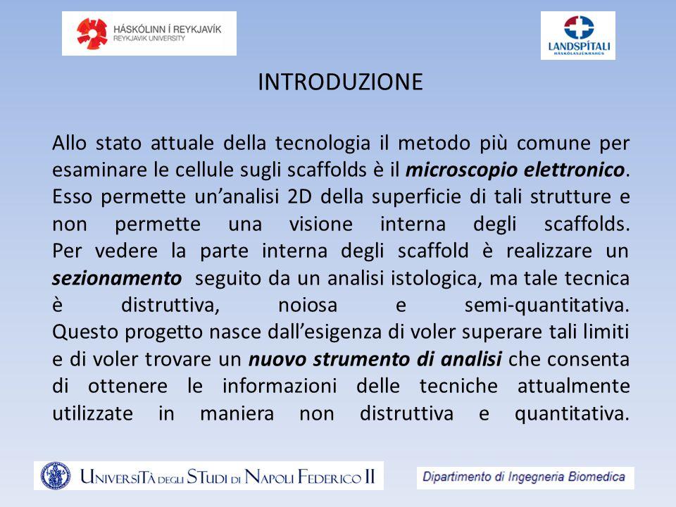 INTRODUZIONE Allo stato attuale della tecnologia il metodo più comune per esaminare le cellule sugli scaffolds è il microscopio elettronico.