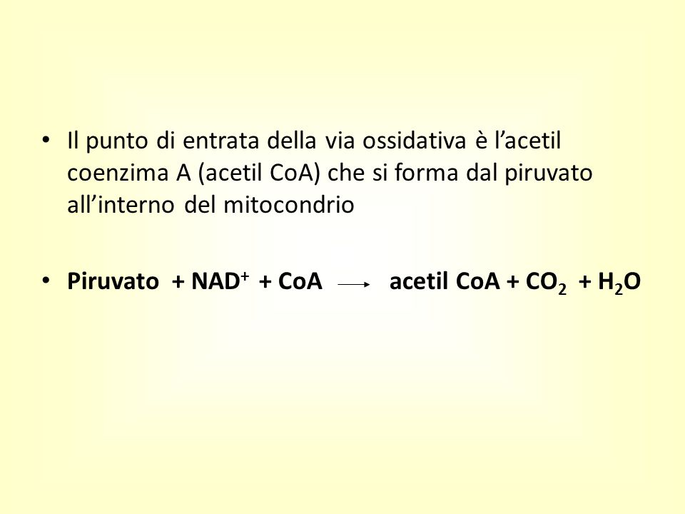 Il punto di entrata della via ossidativa è l'acetil coenzima A (acetil CoA) che si forma dal piruvato all'interno del mitocondrio Piruvato + NAD + + C