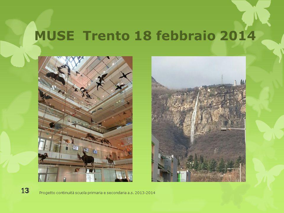 MUSE Trento 18 febbraio 2014 Progetto continuità scuola primaria e secondaria a.s. 2013-2014 13