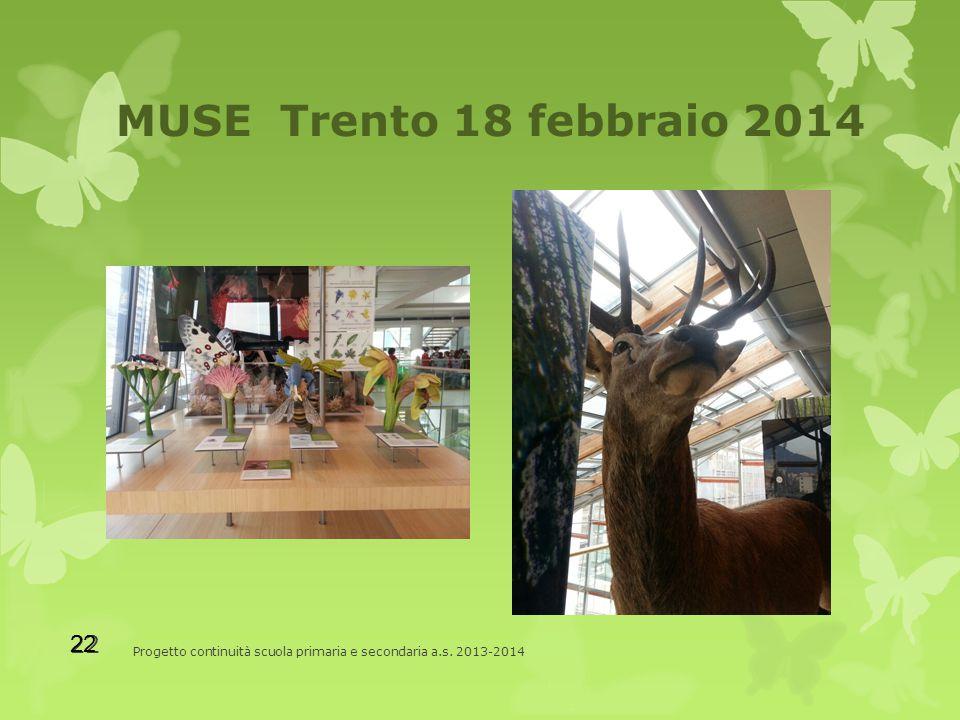 MUSE Trento 18 febbraio 2014 Progetto continuità scuola primaria e secondaria a.s. 2013-2014 22