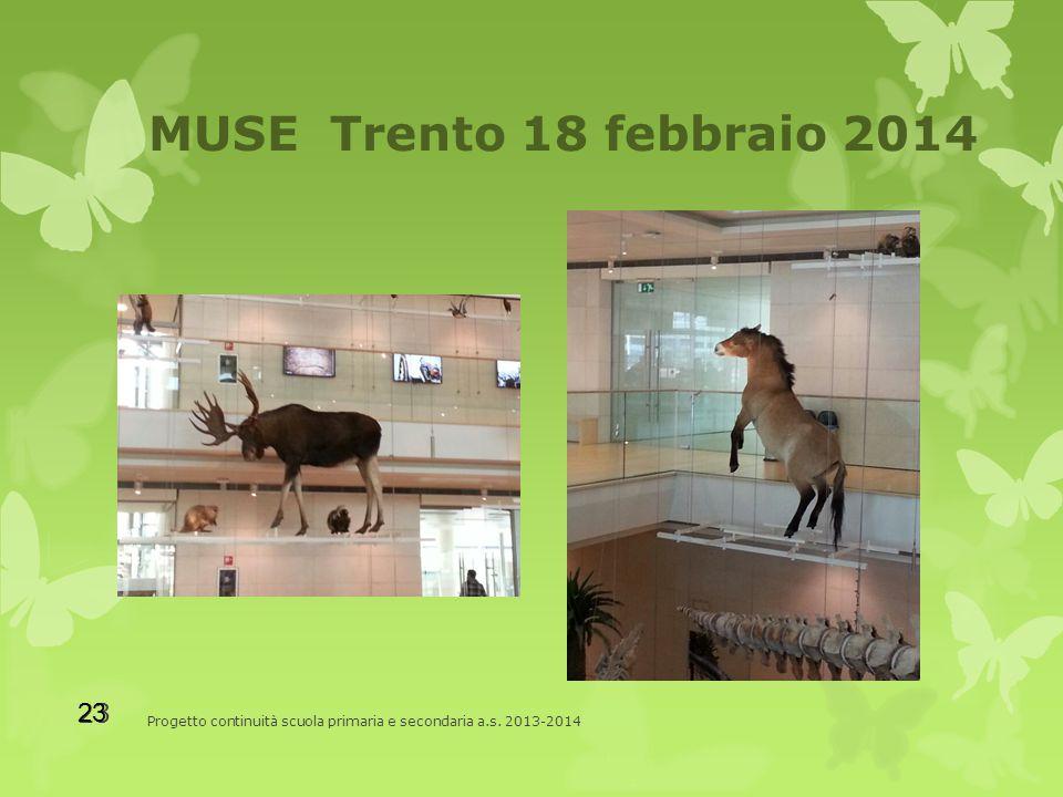 MUSE Trento 18 febbraio 2014 Progetto continuità scuola primaria e secondaria a.s. 2013-2014 23