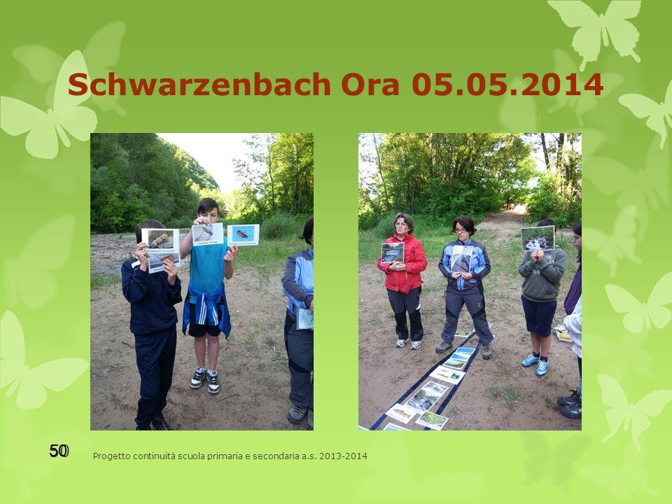 Schwarzenbach Ora 05.05.2014 Progetto continuità scuola primaria e secondaria a.s. 2013-2014 50