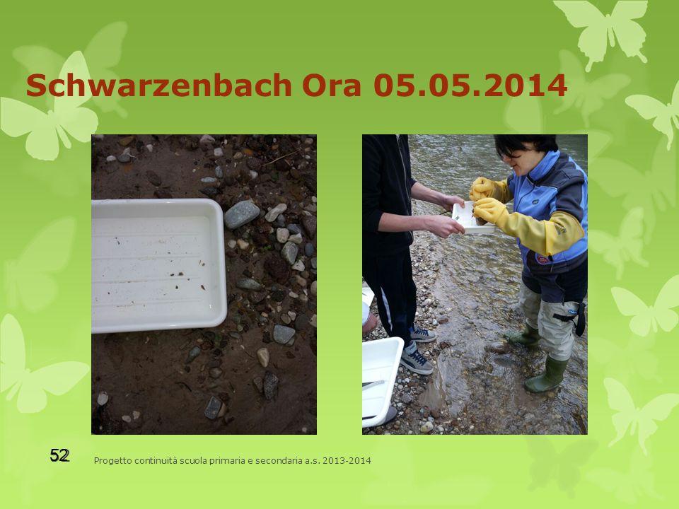 Schwarzenbach Ora 05.05.2014 Progetto continuità scuola primaria e secondaria a.s. 2013-2014 52