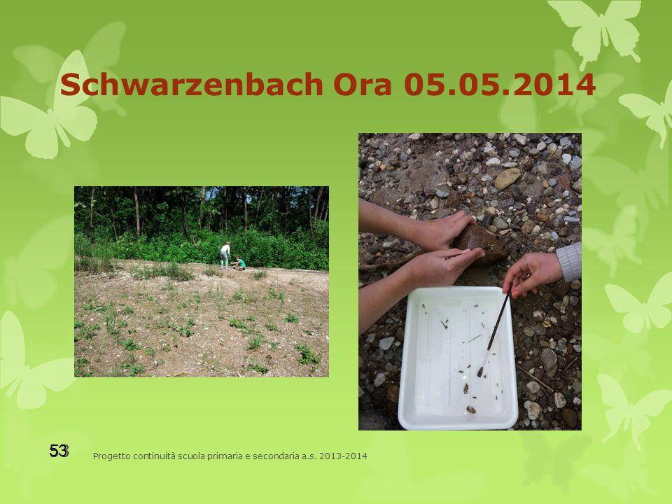 Schwarzenbach Ora 05.05.2014 Progetto continuità scuola primaria e secondaria a.s. 2013-2014 53