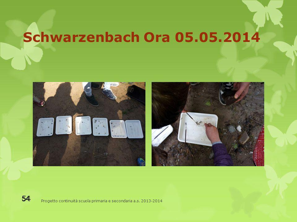 Schwarzenbach Ora 05.05.2014 Progetto continuità scuola primaria e secondaria a.s. 2013-2014 54