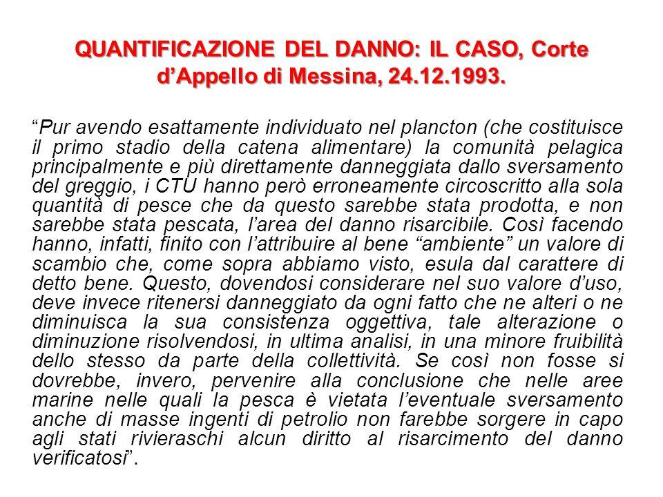 QUANTIFICAZIONE DEL DANNO: IL CASO, Corte d'Appello di Messina, 24.12.1993.