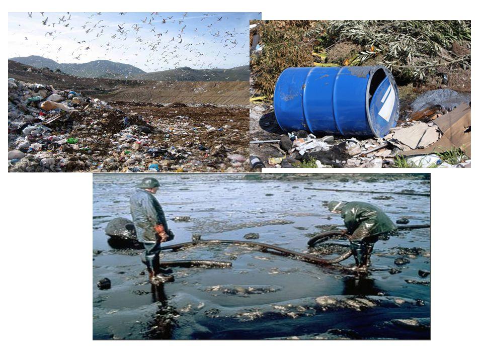 Nella Comunità esistono attualmente molti siti contaminati, che comportano rischi significativi per la salute, e negli ultimi decenni vi è stata una forte accelerazione della perdita di biodiversità .