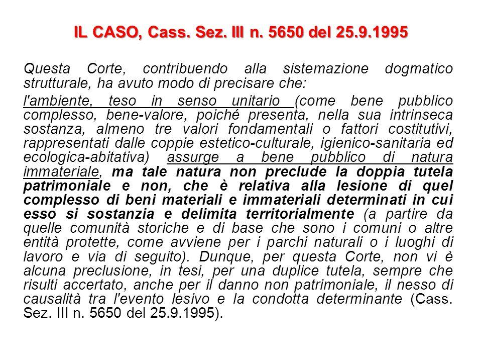 IL CASO, Cass. Sez. III n. 5650 del 25.9.1995 Questa Corte, contribuendo alla sistemazione dogmatico strutturale, ha avuto modo di precisare che: l'am