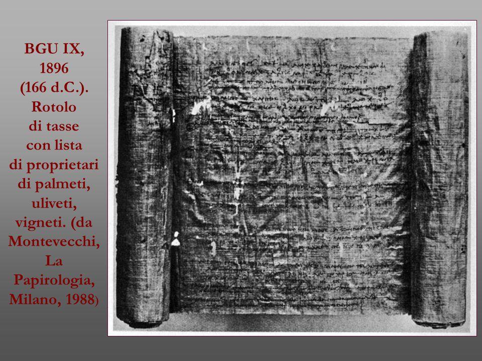 BGU IX, 1896 (166 d.C.). Rotolo di tasse con lista di proprietari di palmeti, uliveti, vigneti. (da Montevecchi, La Papirologia, Milano, 1988 )