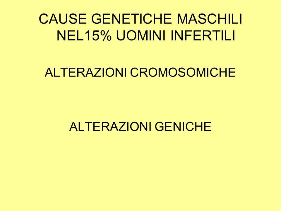 CAUSE GENETICHE MASCHILI NEL15% UOMINI INFERTILI ALTERAZIONI CROMOSOMICHE ALTERAZIONI GENICHE