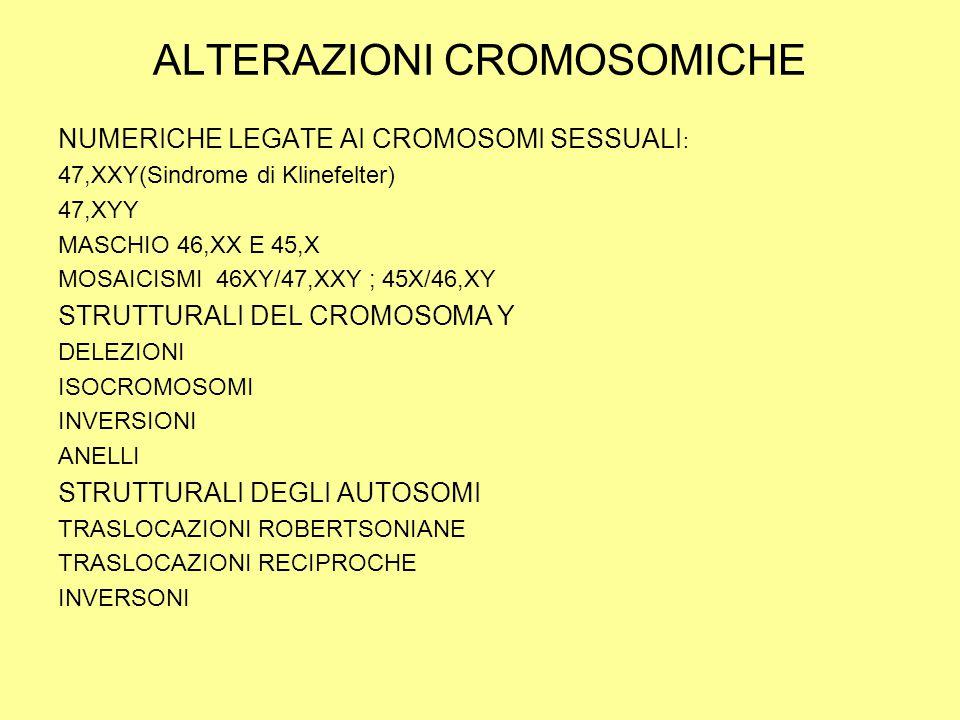 ALTERAZIONI CROMOSOMICHE NUMERICHE LEGATE AI CROMOSOMI SESSUALI : 47,XXY(Sindrome di Klinefelter) 47,XYY MASCHIO 46,XX E 45,X MOSAICISMI 46XY/47,XXY ; 45X/46,XY STRUTTURALI DEL CROMOSOMA Y DELEZIONI ISOCROMOSOMI INVERSIONI ANELLI STRUTTURALI DEGLI AUTOSOMI TRASLOCAZIONI ROBERTSONIANE TRASLOCAZIONI RECIPROCHE INVERSONI