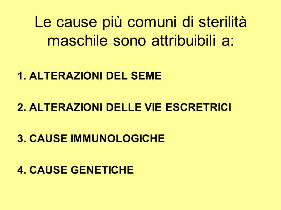 Le cause più comuni di sterilità maschile sono attribuibili a: 1. ALTERAZIONI DEL SEME 2. ALTERAZIONI DELLE VIE ESCRETRICI 3. CAUSE IMMUNOLOGICHE 4. C