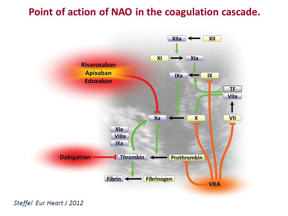 NAO e Funzione renale