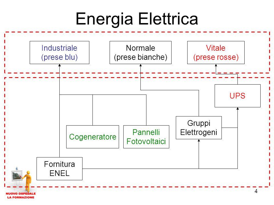 4 Energia Elettrica Cogeneratore Gruppi Elettrogeni UPS Fornitura ENEL Pannelli Fotovoltaici Industriale (prese blu) Normale (prese bianche) Vitale (prese rosse)