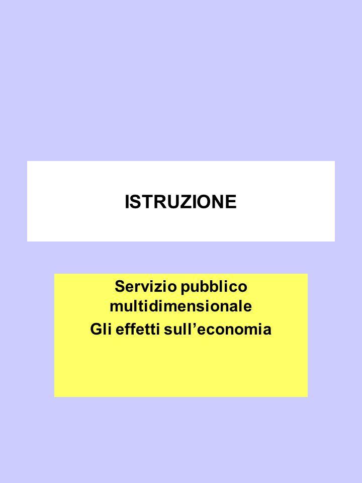 ISTRUZIONE Servizio pubblico multidimensionale Gli effetti sull'economia