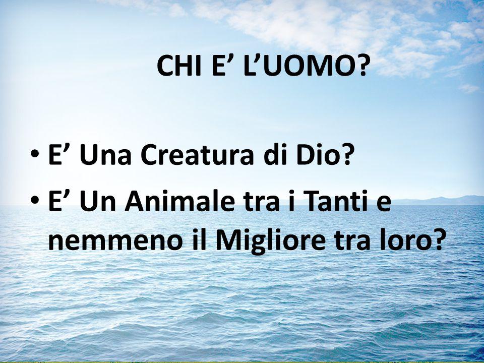CHI E' L'UOMO? E' Una Creatura di Dio? E' Un Animale tra i Tanti e nemmeno il Migliore tra loro?