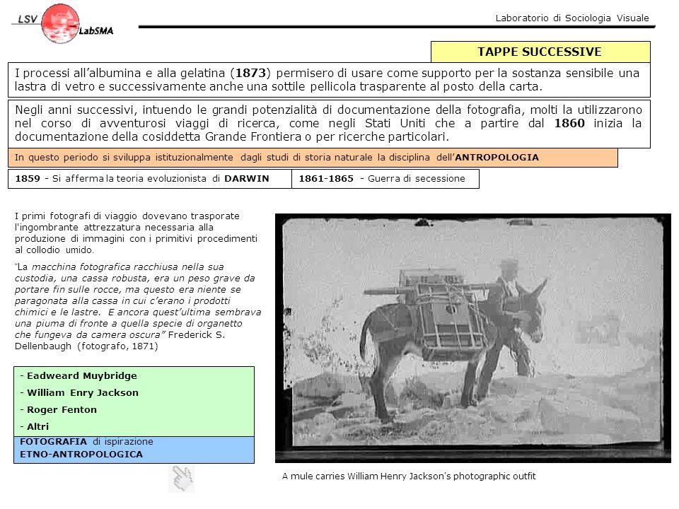 Laboratorio di Sociologia Visuale TAPPE SUCCESSIVE I processi all'albumina e alla gelatina (1873) permisero di usare come supporto per la sostanza sen