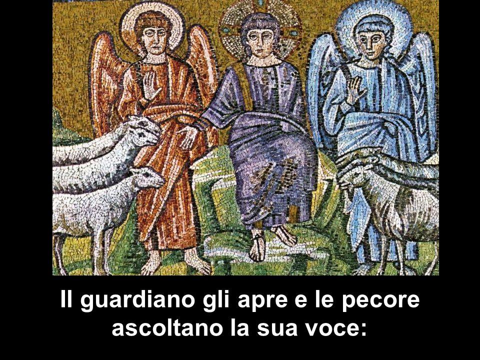 La quarta domenica di Pasqua contempla il Risorto quale pastore della chiesa.
