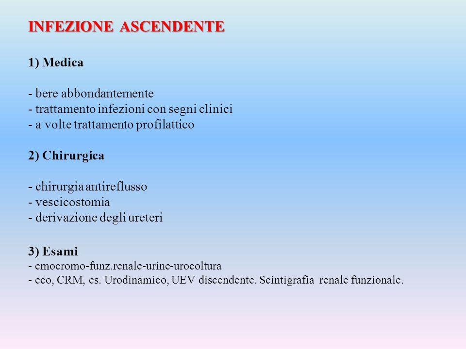 INFEZIONE ASCENDENTE INFEZIONE ASCENDENTE 1) Medica - bere abbondantemente - trattamento infezioni con segni clinici - a volte trattamento profilattic