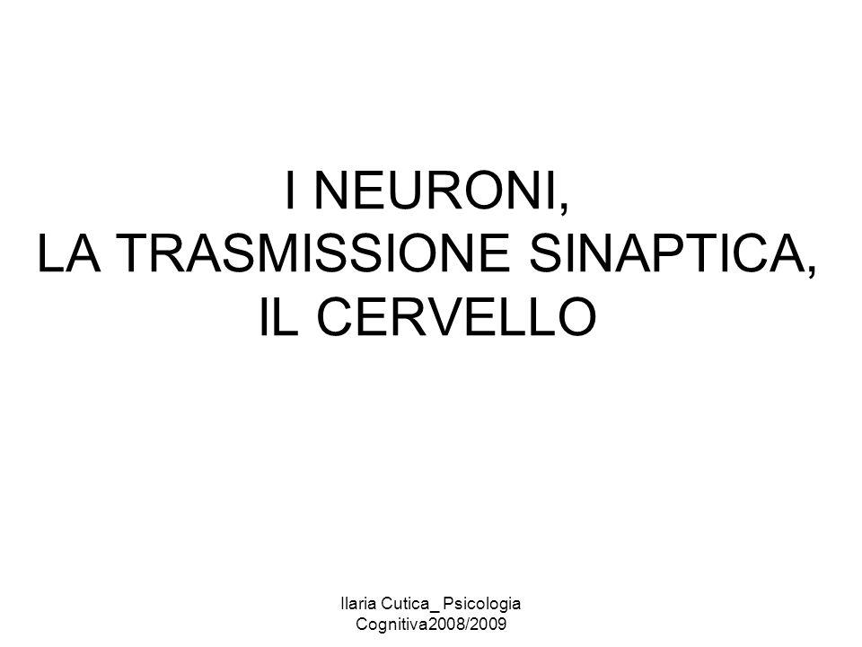 Ilaria Cutica_ Psicologia Cognitiva2008/2009 I NEURONI, LA TRASMISSIONE SINAPTICA, IL CERVELLO