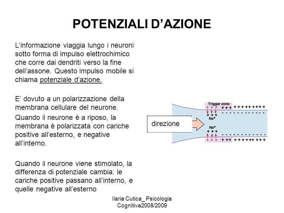 Ilaria Cutica_ Psicologia Cognitiva2008/2009 POTENZIALI D'AZIONE L'informazione viaggia lungo i neuroni sotto forma di impulso elettrochimico che corr