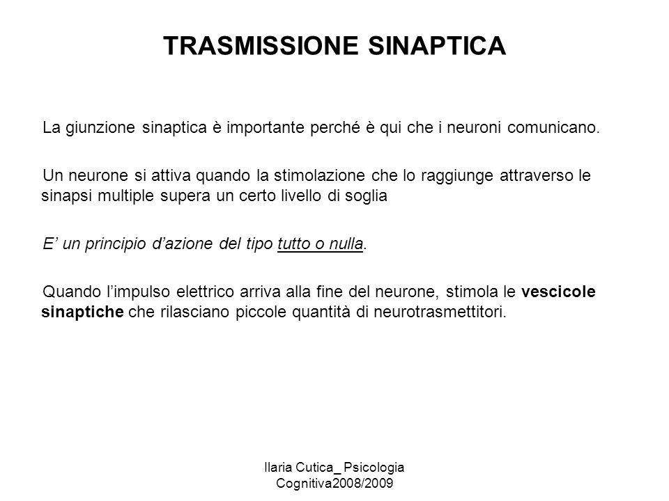 Ilaria Cutica_ Psicologia Cognitiva2008/2009 TRASMISSIONE SINAPTICA La giunzione sinaptica è importante perché è qui che i neuroni comunicano. Un neur