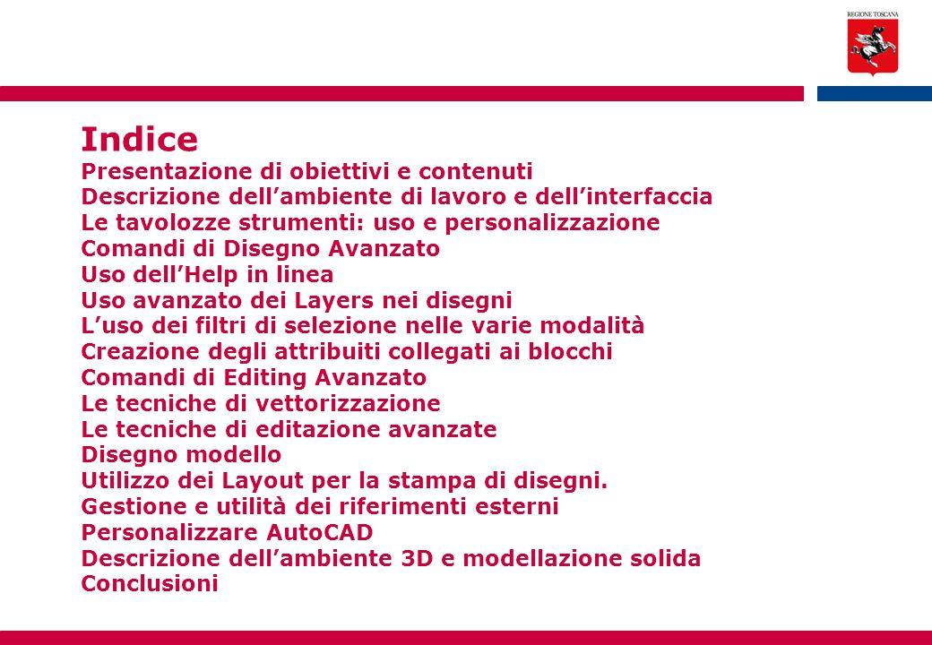 Indice Presentazione di obiettivi e contenuti Descrizione dell'ambiente di lavoro e dell'interfaccia Le tavolozze strumenti: uso e personalizzazione C