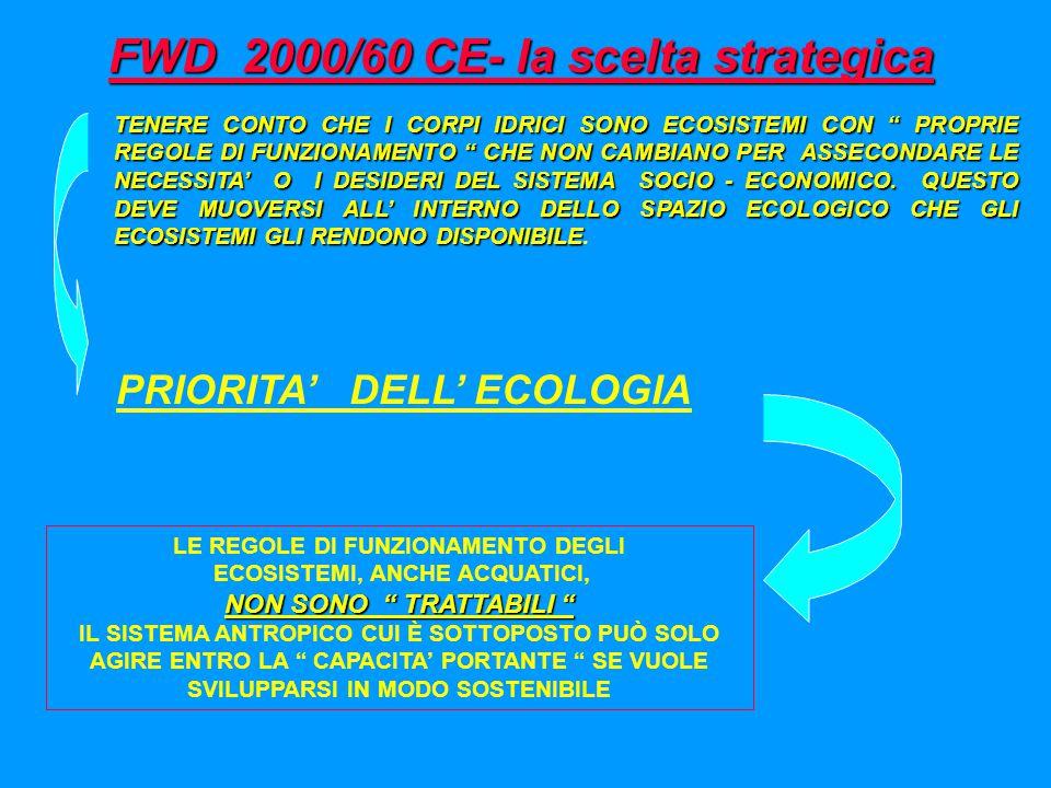 DIRETTIVA FWD 2000/60 CE FLESSIBILITA' DI SOLUZIONE A PARITA' DI TUTELA MASSIMIZZAZIONE DEL RAPPORTO COSTI SOSTENUTI - BENEFICI AMBIENTALI OTTENUTI IL PIANO DI GESTIONE (tutela) IL DISTRETTO IDROGRAFICO COME ENTITA' DI PIANIFICAZIONE Superamento dell'approccio della pianificazione per confini amministrativi LE SOSTANZE PERICOLOSE IL MONITORAGGIO COME STRUMENTO DI GESTIONE PER LA VERIFICA DELLO STATO E DEGLI OBIETTIVI DI QUALITA' ANALISI ECONOMICA
