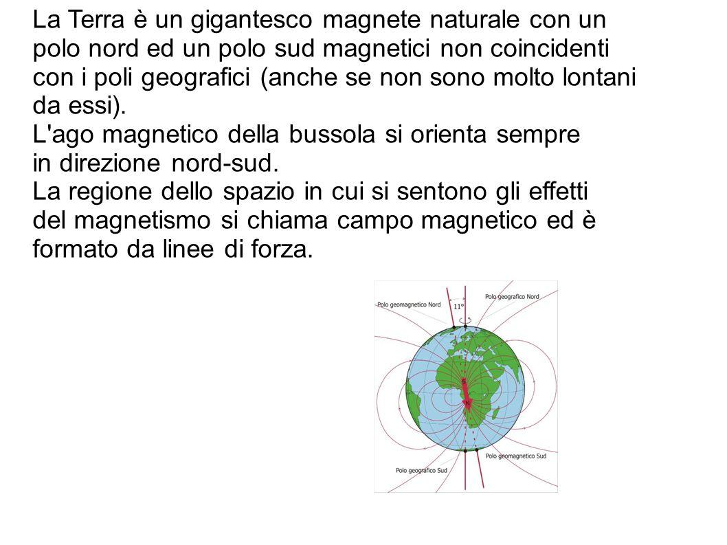 La Terra è un gigantesco magnete naturale con un polo nord ed un polo sud magnetici non coincidenti con i poli geografici (anche se non sono molto lontani da essi).