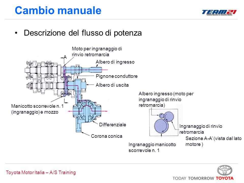 Toyota Motor Italia – A/S Training A A' Moto per ingranaggio di rinvio retromarcia Differenziale Albero di ingresso Pignone conduttore Albero di uscit