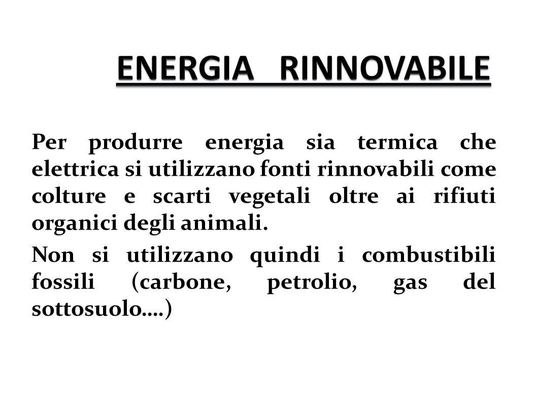 Per produrre energia sia termica che elettrica si utilizzano fonti rinnovabili come colture e scarti vegetali oltre ai rifiuti organici degli animali.