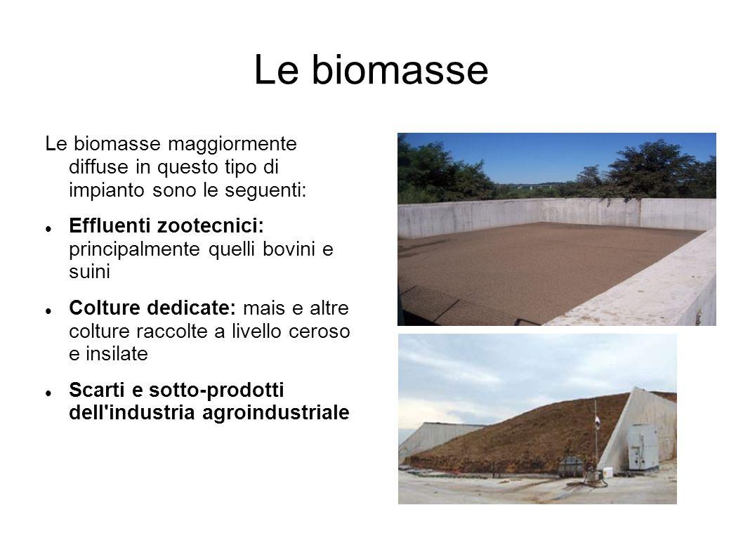 Le biomasse Le biomasse maggiormente diffuse in questo tipo di impianto sono le seguenti: Effluenti zootecnici: principalmente quelli bovini e suini C