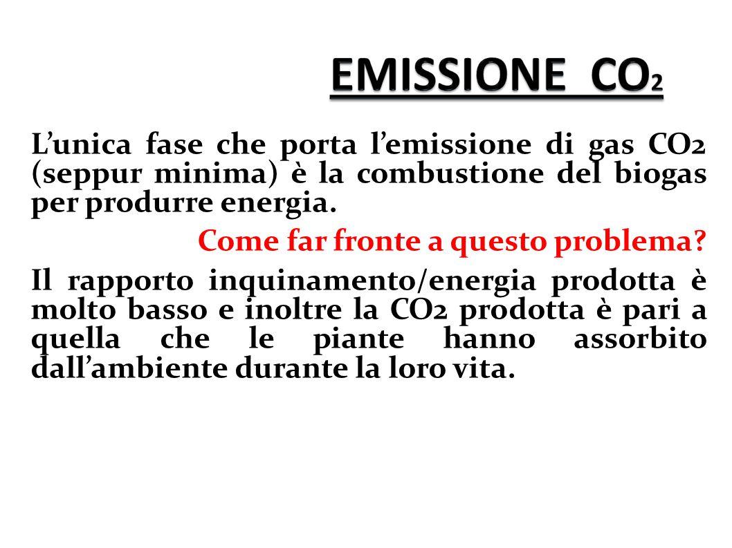 L'unica fase che porta l'emissione di gas CO2 (seppur minima) è la combustione del biogas per produrre energia. Come far fronte a questo problema? Il