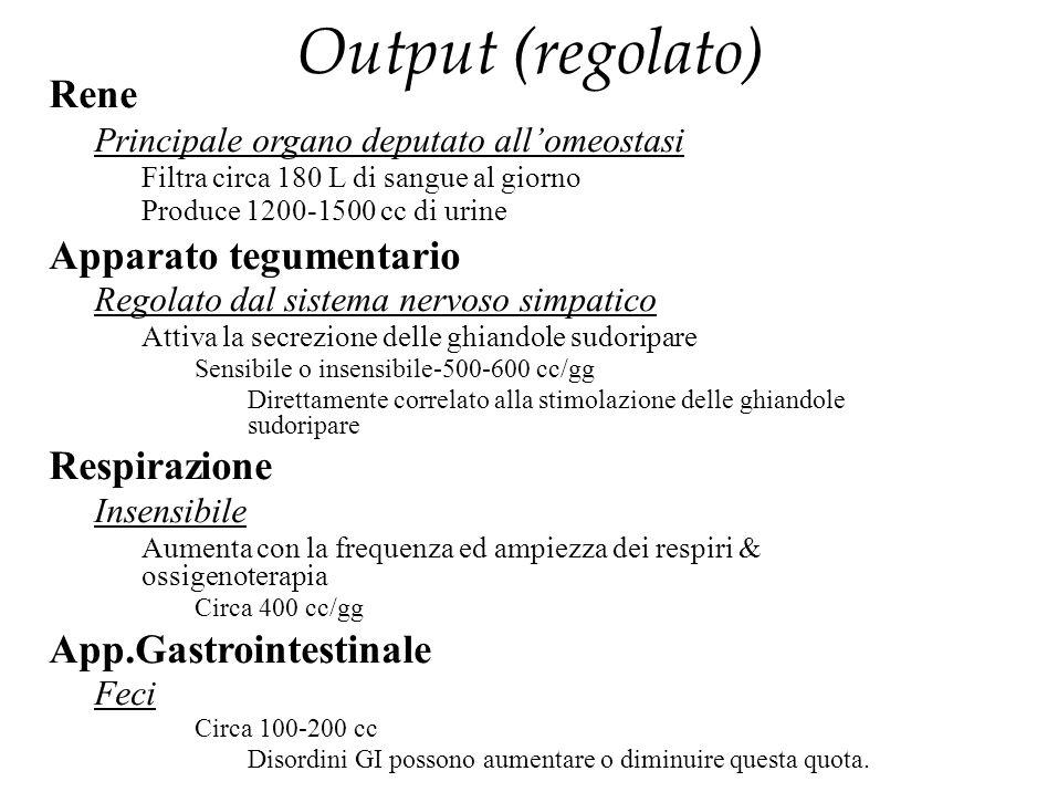 Output (regolato) Rene Principale organo deputato all'omeostasi Filtra circa 180 L di sangue al giorno Produce 1200-1500 cc di urine Apparato tegument