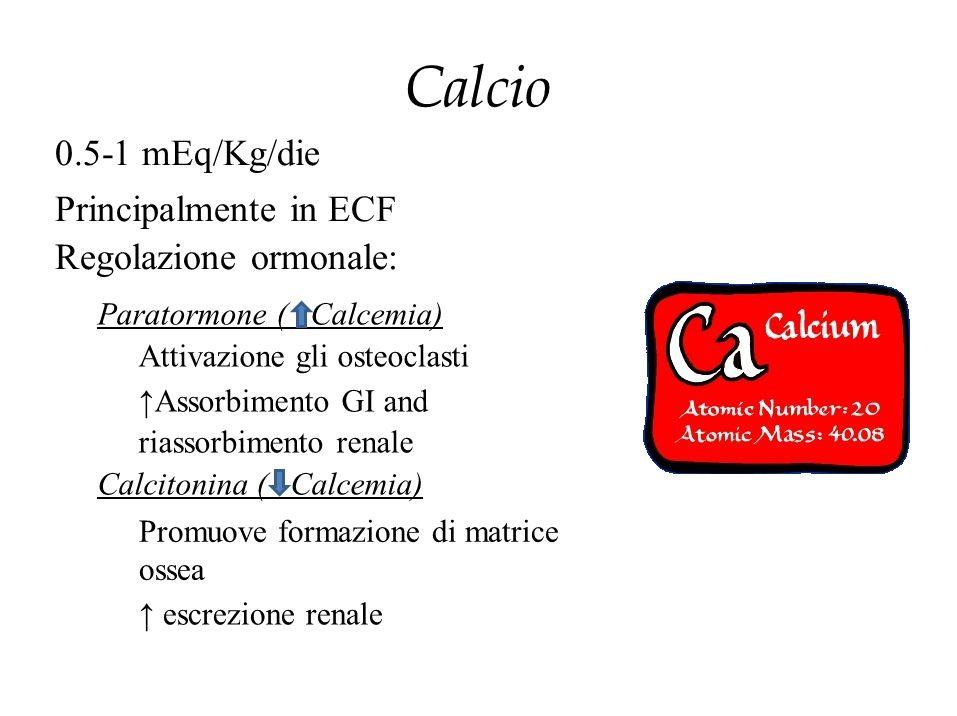 Calcio 0.5-1 mEq/Kg/die Principalmente in ECF Regolazione ormonale: Paratormone ( Calcemia) Attivazione gli osteoclasti ↑Assorbimento GI and riassorbi