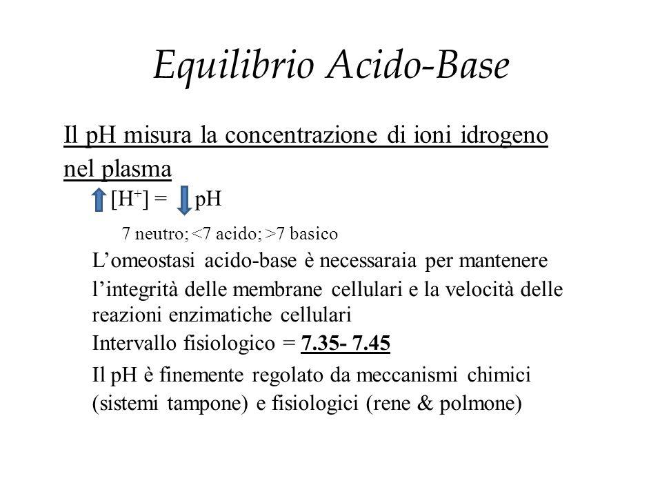 Equilibrio Acido-Base Il pH misura la concentrazione di ioni idrogeno nel plasma [H + ] =pH 7 neutro; 7 basico L'omeostasi acido-base è necessaraia pe