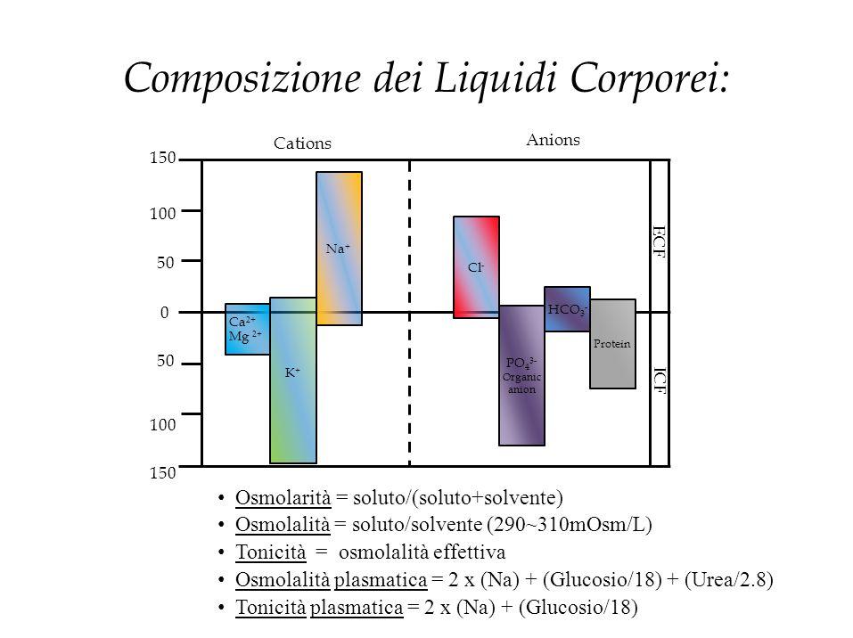 PO 4 3- Organic anion Cl - ECF ICF Composizione dei Liquidi Corporei: 0 50 150 100 50 Cations Anions 100 150 Osmolarità = soluto/(soluto+solvente) Osm