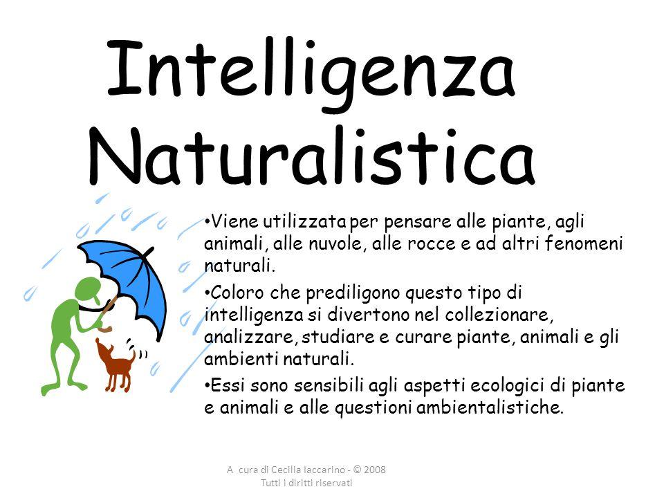 A cura di Cecilia Iaccarino - © 2008 Tutti i diritti riservati Intelligenza Naturalistica Viene utilizzata per pensare alle piante, agli animali, alle nuvole, alle rocce e ad altri fenomeni naturali.