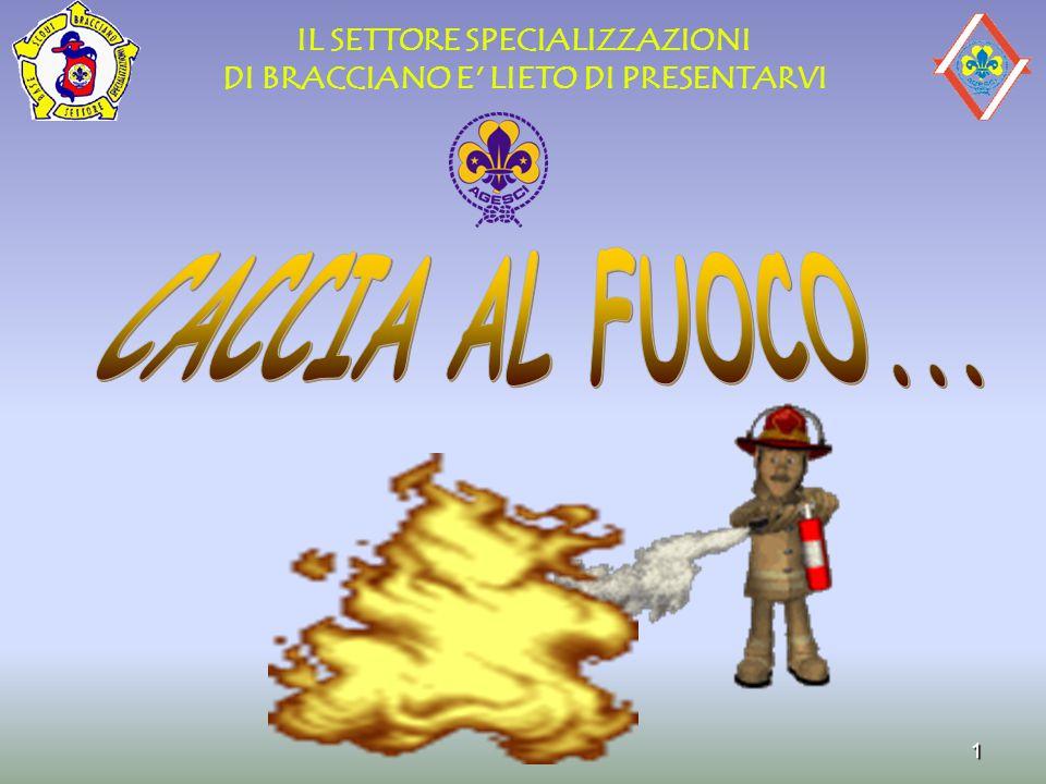 22 SORVEGLIANZA -CHE L'ESTINTORE SI TROVI AL SUO POSTO -SIA BEN VISIBILE -NON MANOMESSO -INTEGRITA' STRUTTURA DI SUPPORTO -INTEGRITA' MANIGLIA DI TRASPORTO -CARTELLINO COMPILATO -SE PROVVISTO DI MANOMETRO CONTROLLO LANCETTA NEL CAMPO VERDE -SE PROVVISTO DI MANOMETRO CONTROLLO LANCETTA NEL CAMPO VERDE