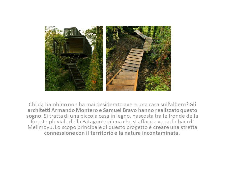 Chi da bambino non ha mai desiderato avere una casa sull'albero? Gli architetti Armando Montero e Samuel Bravo hanno realizzato questo sogno. Si tratt