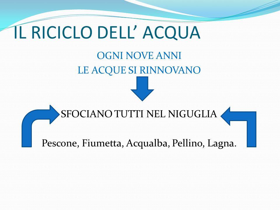 IL RICICLO DELL' ACQUA OGNI NOVE ANNI LE ACQUE SI RINNOVANO SFOCIANO TUTTI NEL NIGUGLIA Pescone, Fiumetta, Acqualba, Pellino, Lagna.