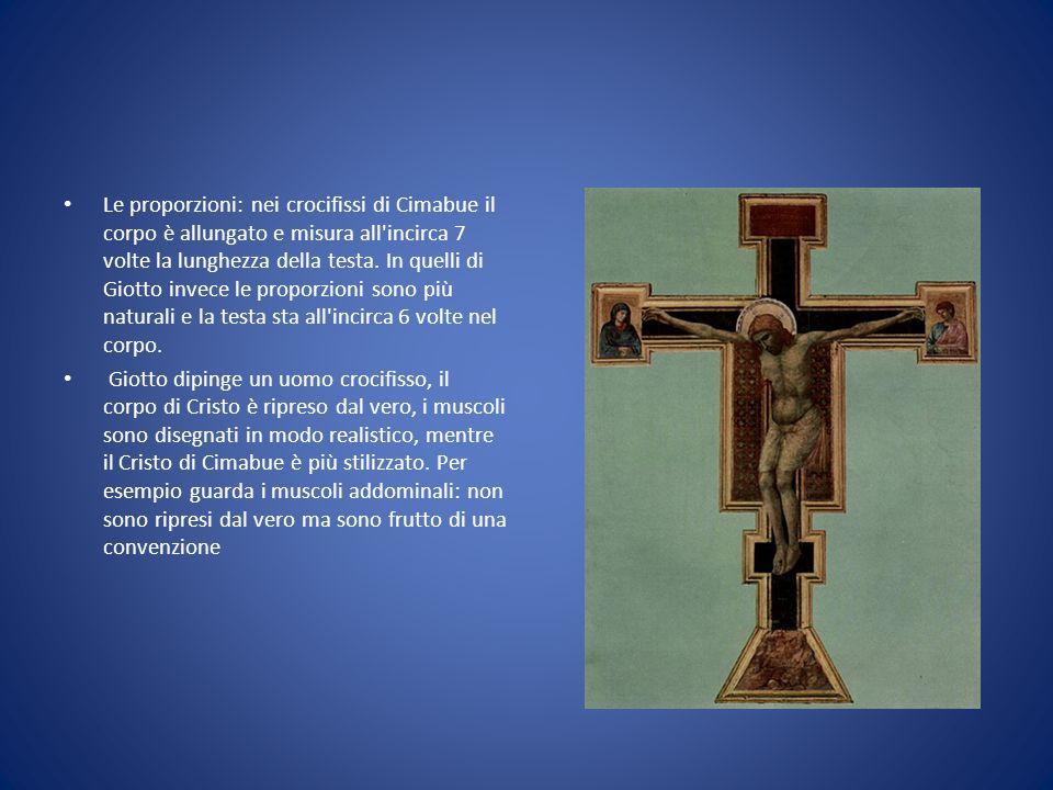 Le proporzioni: nei crocifissi di Cimabue il corpo è allungato e misura all'incirca 7 volte la lunghezza della testa. In quelli di Giotto invece le pr