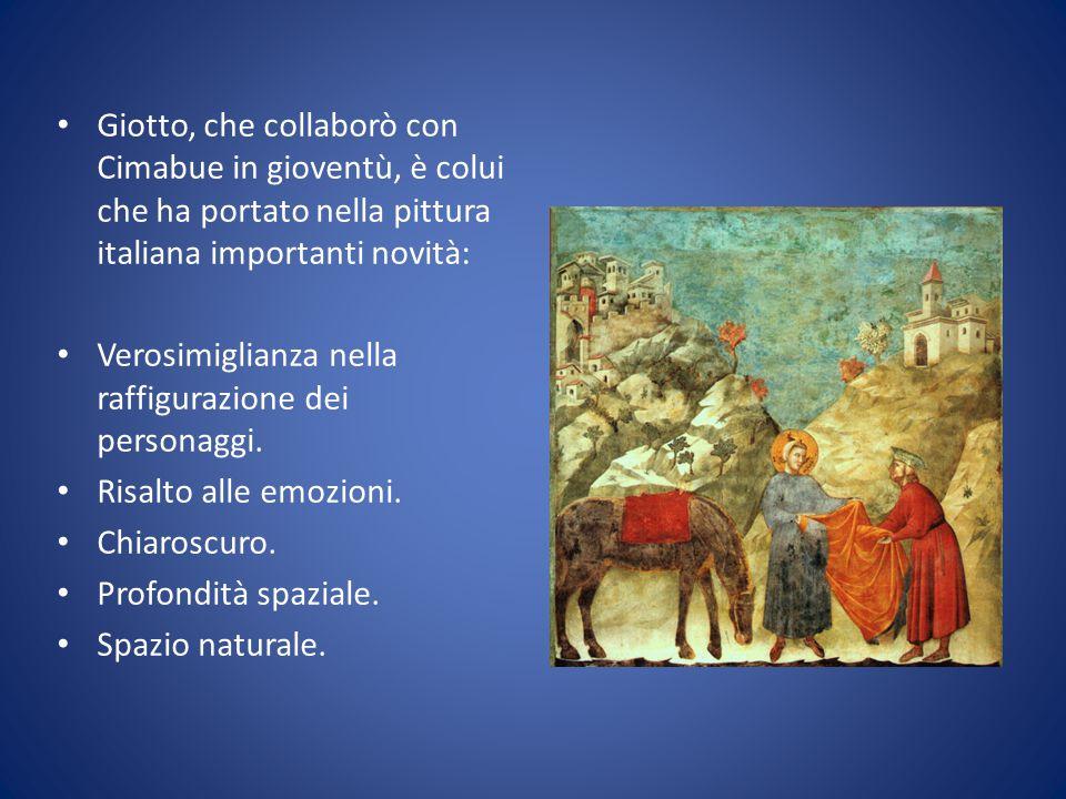 Giotto, che collaborò con Cimabue in gioventù, è colui che ha portato nella pittura italiana importanti novità: Verosimiglianza nella raffigurazione d