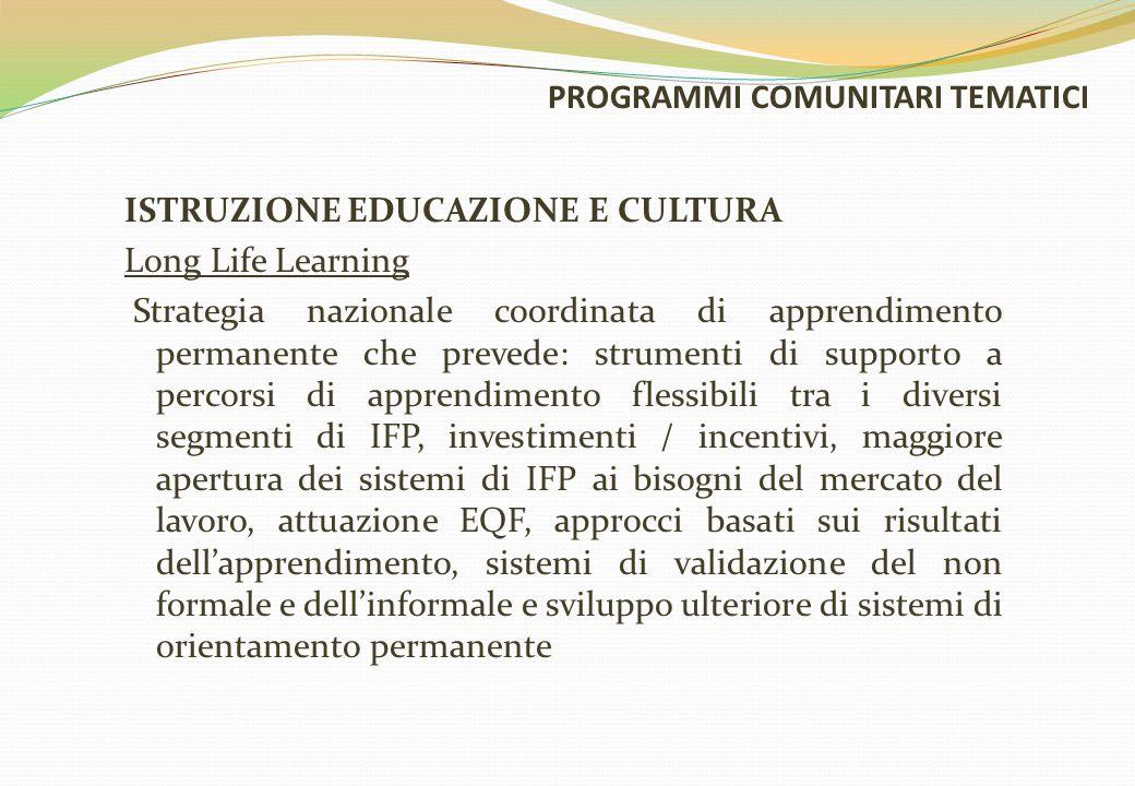 PROGRAMMI COMUNITARI TEMATICI ISTRUZIONE EDUCAZIONE E CULTURA Long Life Learning Strategia nazionale coordinata di apprendimento permanente che preved