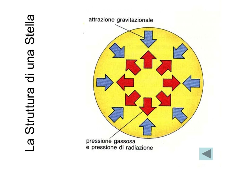 La struttura interna delle stelle