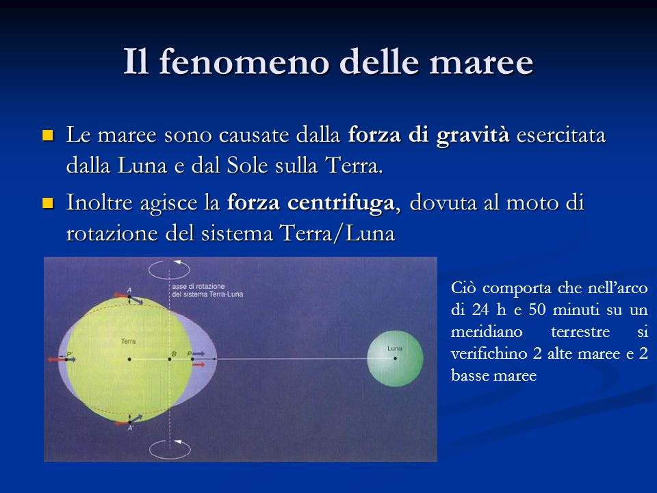 Il fenomeno delle maree Le maree sono causate dalla forza di gravità esercitata dalla Luna e dal Sole sulla Terra. Le maree sono causate dalla forza d