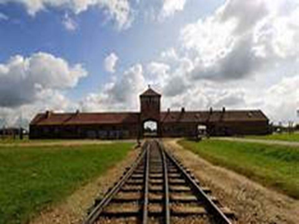 Le peculiarità di Auschwitz Auschwitz fu il più grande centro di concentramento e di sterminio nazista.